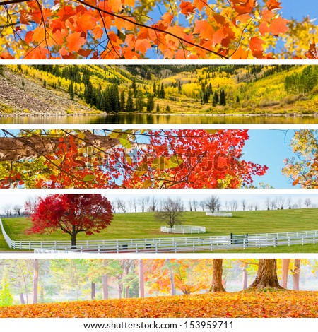 Autumn Collage with 5 different pictures banners.