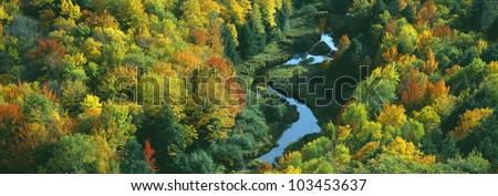 Autumn color at Porcupine State Park, Michigan's Upper Peninsula, Michigan
