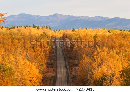 Autumn colored trees along road in British Columbia