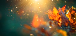 Autumn colorful bright Leaves swinging in a tree in autumnal Park. Autumn colorful background, fall backdrop. Backlit, sun flare