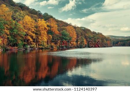 Autumn colorful foliage with lake reflection.