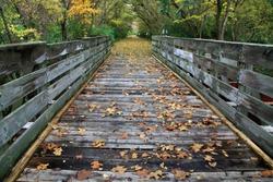 Autumn Colors And A Bike Path Bridge On The Little Miami Scenic River Trail, Southwestern Ohio