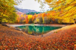 Autumn colors. Autumn time. Colorful fallen leaves in the lake. Magnificent landscape. Yedigoller National Park. Bolu, Istanbul, Turkey.