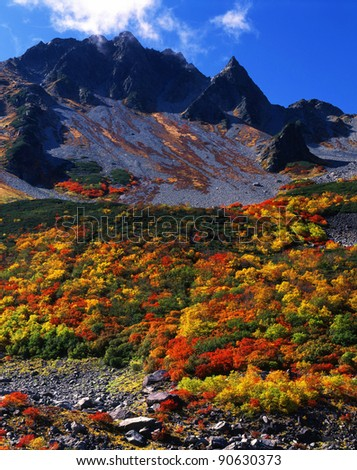 Autumn colors in Japan Alps