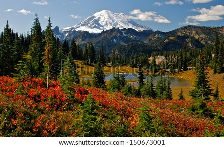 Autumn colors in Mt. Rainier National Park #150673001