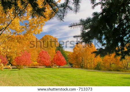 Autumn colors in New England