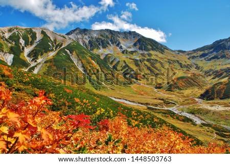 Autumn colors in Tateyama alpine, Japan #1448503763