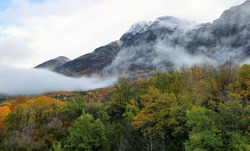 Autumn colors in the forest surrounding Bubal lake in Tena Valley in a foggy day, Aragonese pyrenees, Huesca province, Spain