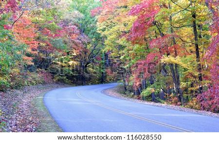 Autumn colors on the Blue Ridge Parkway near Asheville, North Carolina - Shutterstock ID 116028550
