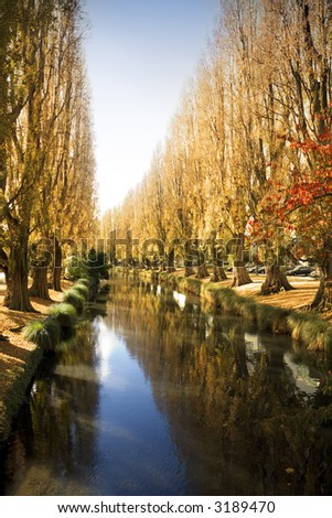 Autumn colour along the Avon River in Christchurch, New Zealand.