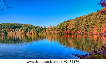 Autumn colour of Shirakoma Pond, Shirakoma pond is located in Nagano Prefecture, Japan., beautiful autumn colored leaves trees reflected in Water around Shirakoma pond. #1192181179