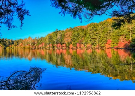 Autumn colour of Shirakoma Pond, Shirakoma pond is located in Nagano Prefecture, Japan., beautiful autumn colored leaves trees reflected in Water around Shirakoma pond. #1192956862