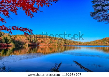 Autumn colour of Shirakoma Pond, Shirakoma pond is located in Nagano Prefecture, Japan., beautiful autumn colored leaves trees reflected in Water around Shirakoma pond. #1192956907