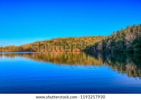 Autumn colour of Shirakoma Pond, Shirakoma pond is located in Nagano Prefecture, Japan., beautiful autumn colored leaves trees reflected in Water around Shirakoma pond. #1193257930
