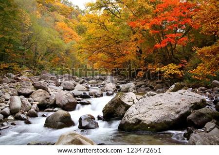 Autumn colours of Nakatsugawa valley in Fukushima, Japan