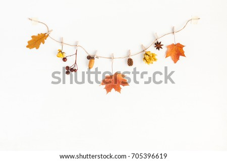 Autumn composition. Autumn flowers and leaves, acorn, pine cone, anise star. Flat lay, top view, copy space. #705396619
