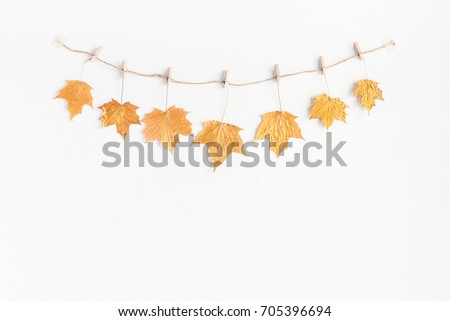Autumn composition. Autumn maple tree leaves on white background. Flat lay, top view, copy space #705396694