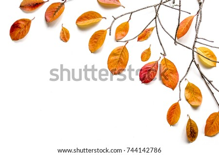Autumn composition. Branches and yellow leaves. Movement of falling leaves from branches. Flat lay, top view, copy space #744142786