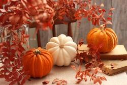 Autumn composition concept background.Autumn time, home comfort, fall season.