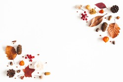 Autumn composition. Dried leaves, flowers, berries on white background. Autumn, fall, thanksgiving day concept. Flat lay, top view, copy space