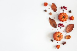 Autumn composition. Dried leaves, pumpkins, flowers, rowan berries on white background. Autumn, fall, halloween, thanksgiving day concept. Flat lay, top view, copy space