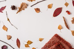 Autumn composition: fallen leaves, dry plants, and orange scarf on white background with space for text in center. Top view. Flat lay.