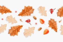 Autumn composition. Frame from of autumn leaves, acorns, berries on white background. Flat lay, top view