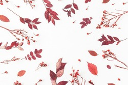 Autumn composition. Frame made of autumn flowers and leaves. Flat lay, top view, copy space