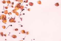 Autumn composition. Frame made of autumn flowers and leaves on pastel pink background. Flat lay, top view, copy space