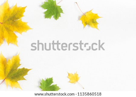 Autumn composition. Frame made of autumn maple leaves on white background. Flat lay, top view, copy space #1135860518