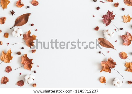 Autumn composition. Frame made of cotton flowers, dried maple leaves on pastel gray background. Autumn, fall concept. Flat lay, top view, copy space #1145912237