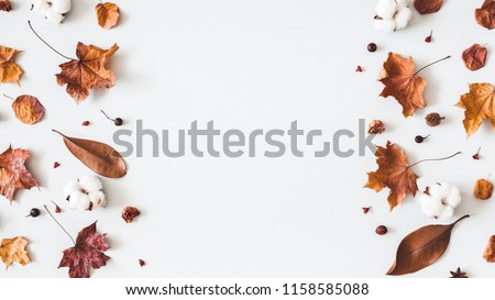 Autumn composition. Frame made of cotton flowers, dried maple leaves on pastel gray background. Autumn, fall concept. Flat lay, top view, copy space #1158585088
