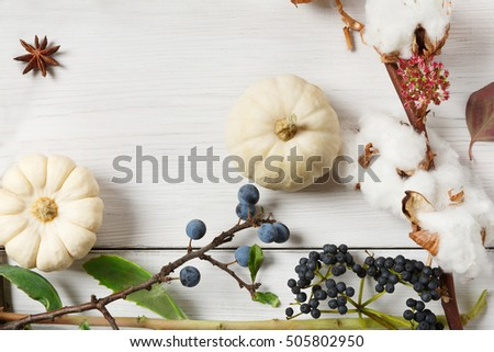 Autumn composition. Frame made of dried fall flowers, pumpkins, branches and autumn leaves, also cotton, clove and sloe. Top view on white wood, flat lay, copy space