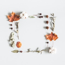 Autumn composition. Frame made of eucalyptus branches, cotton flowers, dried leaves on pastel gray background. Autumn, fall concept. Flat lay, top view, copy space, square