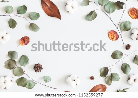 Stock Photo Autumn composition. Frame made of eucalyptus branches, cotton flowers, dried leaves on pastel gray background. Autumn, fall concept. Flat lay, top view, copy space