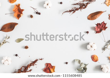 Autumn composition. Frame made of eucalyptus branches, cotton flowers, dried leaves on pastel gray background. Autumn, fall concept. Flat lay, top view, copy space #1155608485