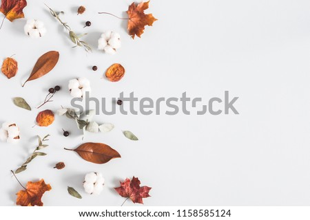 Autumn composition. Frame made of eucalyptus branches, cotton flowers, dried leaves on pastel gray background. Autumn, fall concept. Flat lay, top view, copy space #1158585124