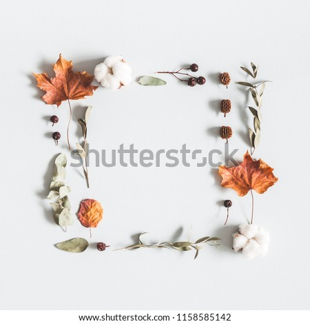 Autumn composition. Frame made of eucalyptus branches, cotton flowers, dried leaves on pastel gray background. Autumn, fall concept. Flat lay, top view, copy space, square #1158585142