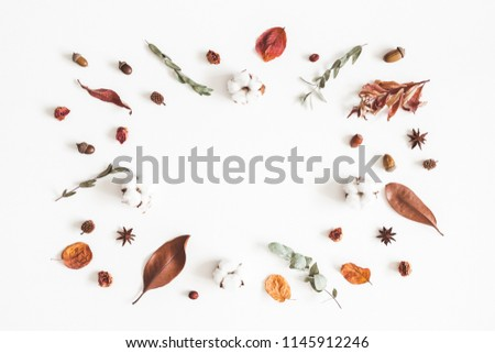 Autumn composition. Frame made of eucalyptus branches, cotton flowers, dried leaves on white background. Autumn, fall concept. Flat lay, top view, copy space #1145912246
