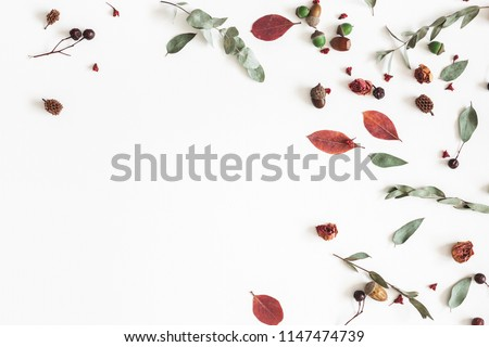 Autumn composition. Frame made of eucalyptus branches, rose flowers, dried leaves on white background. Autumn, fall concept. Flat lay, top view, copy space #1147474739