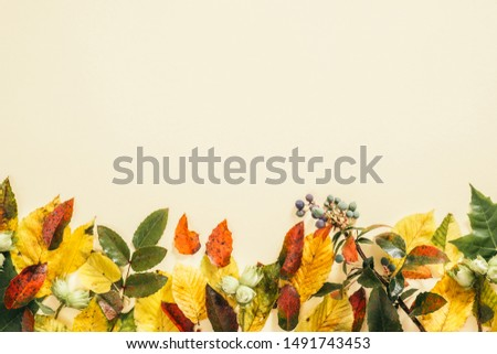 Autumn composition. Frame made of fall autumn leaves on pastel beige background. Flat lay, top view