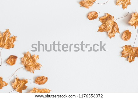 Autumn composition. Frame made of golden maple leaves on pastel gray background. Autumn, fall concept. Flat lay, top view, copy space