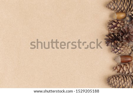 Autumn composition, frame made of pine cones, acorns and chestnuts. Flat lay, top view #1529205188