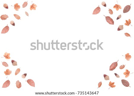 Autumn composition made of autumn leaves and acorns. Flat lay, top view, from above. Isolated on a white background. Copy space area available #735143647