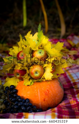 autumn composition of apples of the bunch of leaves on the pumpkin #660435319