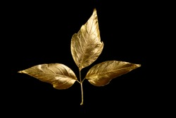 autumn composition of different Golden leaves and letters on a black background