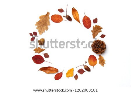 autumn composition of leaves on a white background top view. Place for text, minimalism, insta, flatlay #1202003101