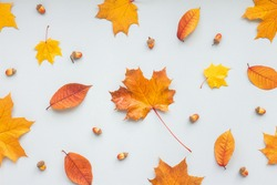 Autumn composition on white background, flat lay, top view