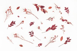 Autumn composition. Pattern made of autumn flowers and leaves. Flat lay, top view