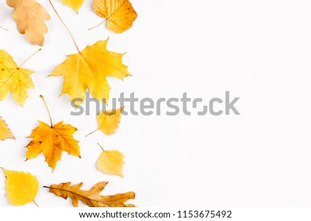 Autumn composition. Pattern made of autumn  leaves. Flat lay, top view, copy space
